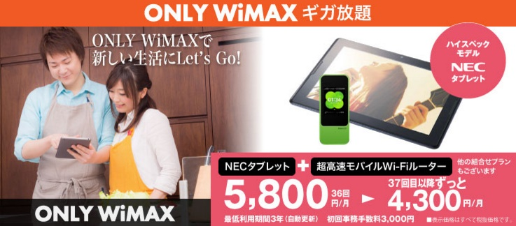 only wimax